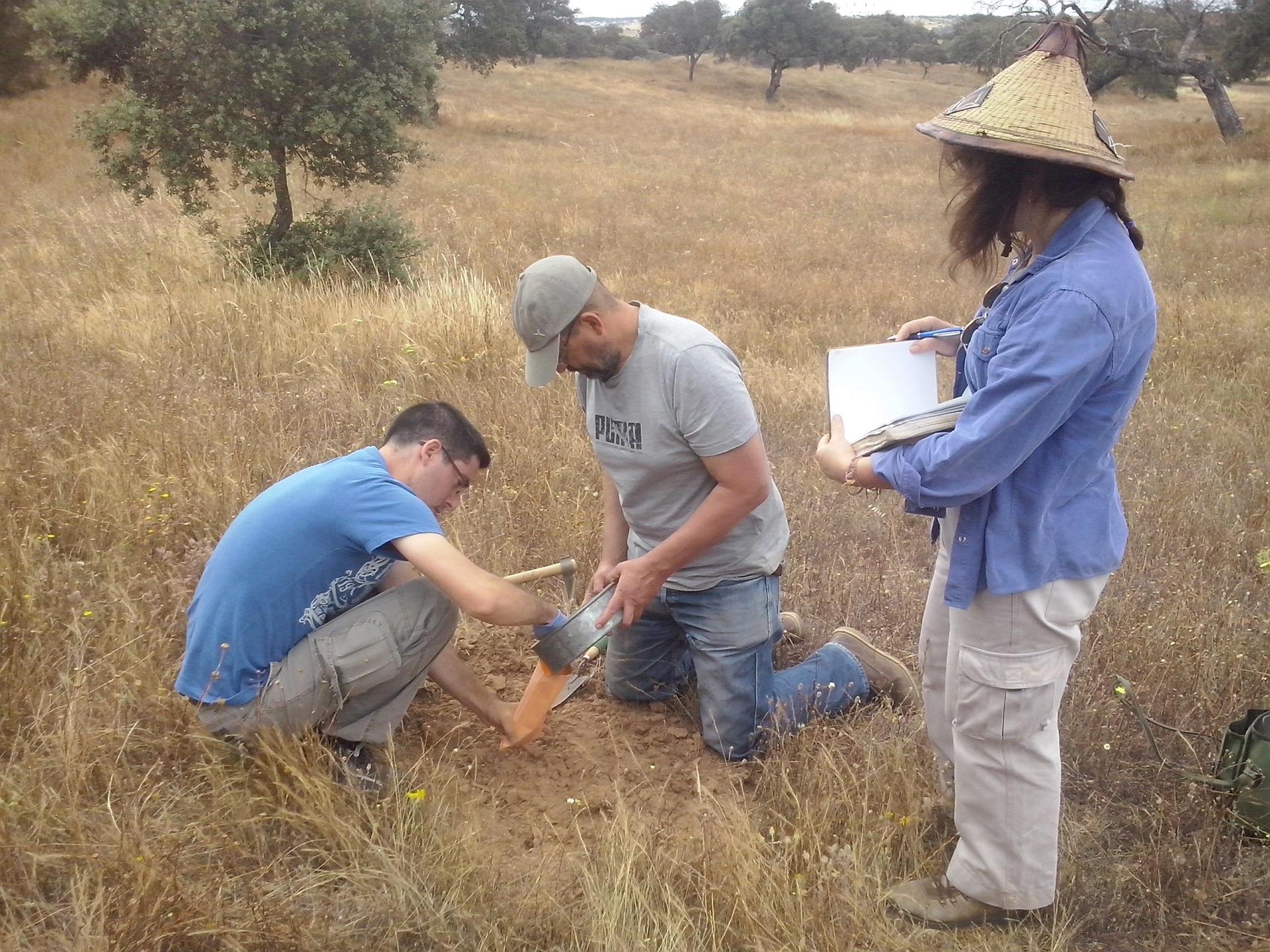 Trabalho de campo, colheita de amostras