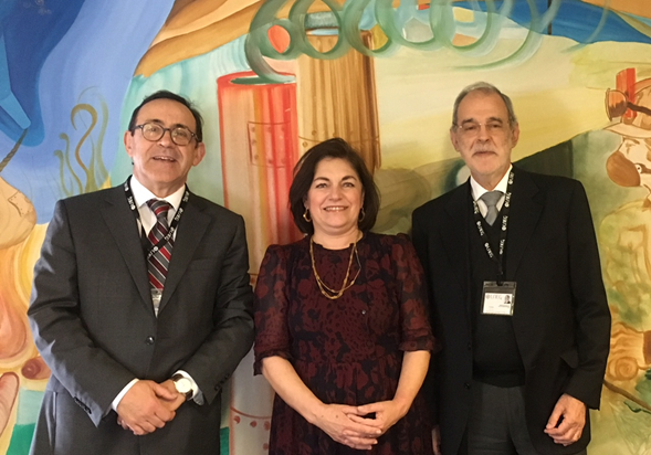 Membros do Conselho Diretivo (da esquerda para a direita): Helder Gonçalves (vogal), Teresa Ponce de Leão (presidente) e Mário Machado Leite (vogal)