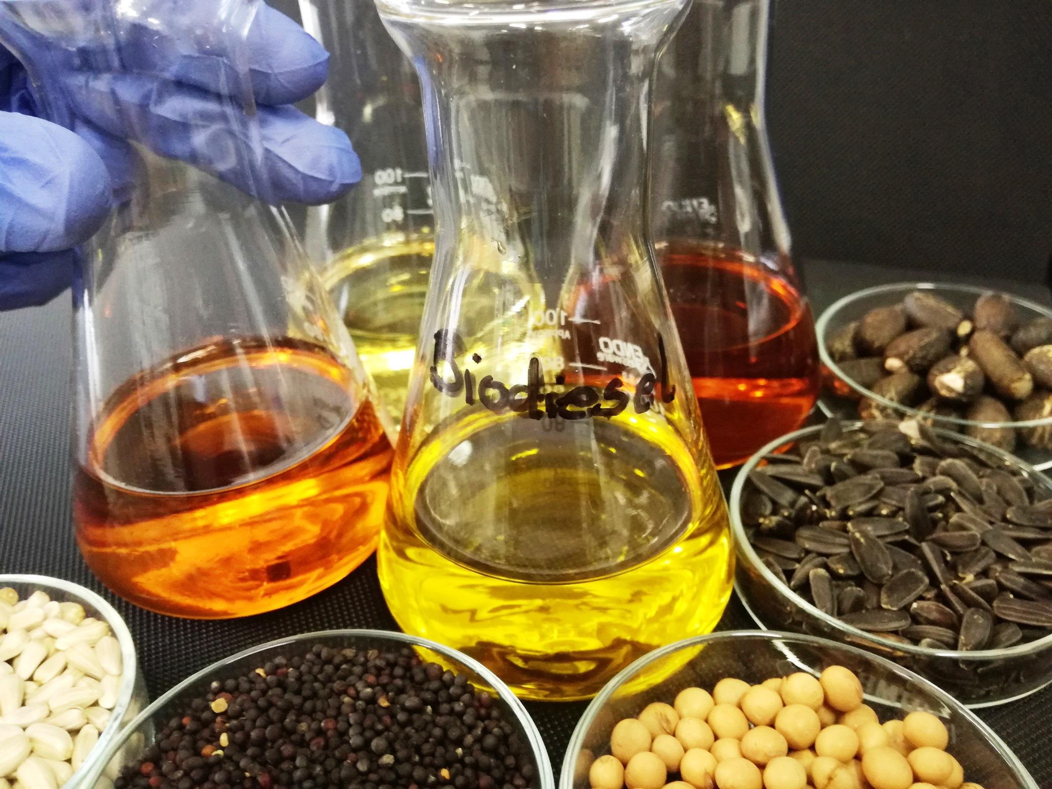 Biodiesel - Derivados de óleos e gorduras-Ésteres metílicos de ácidos gordos (FAME)