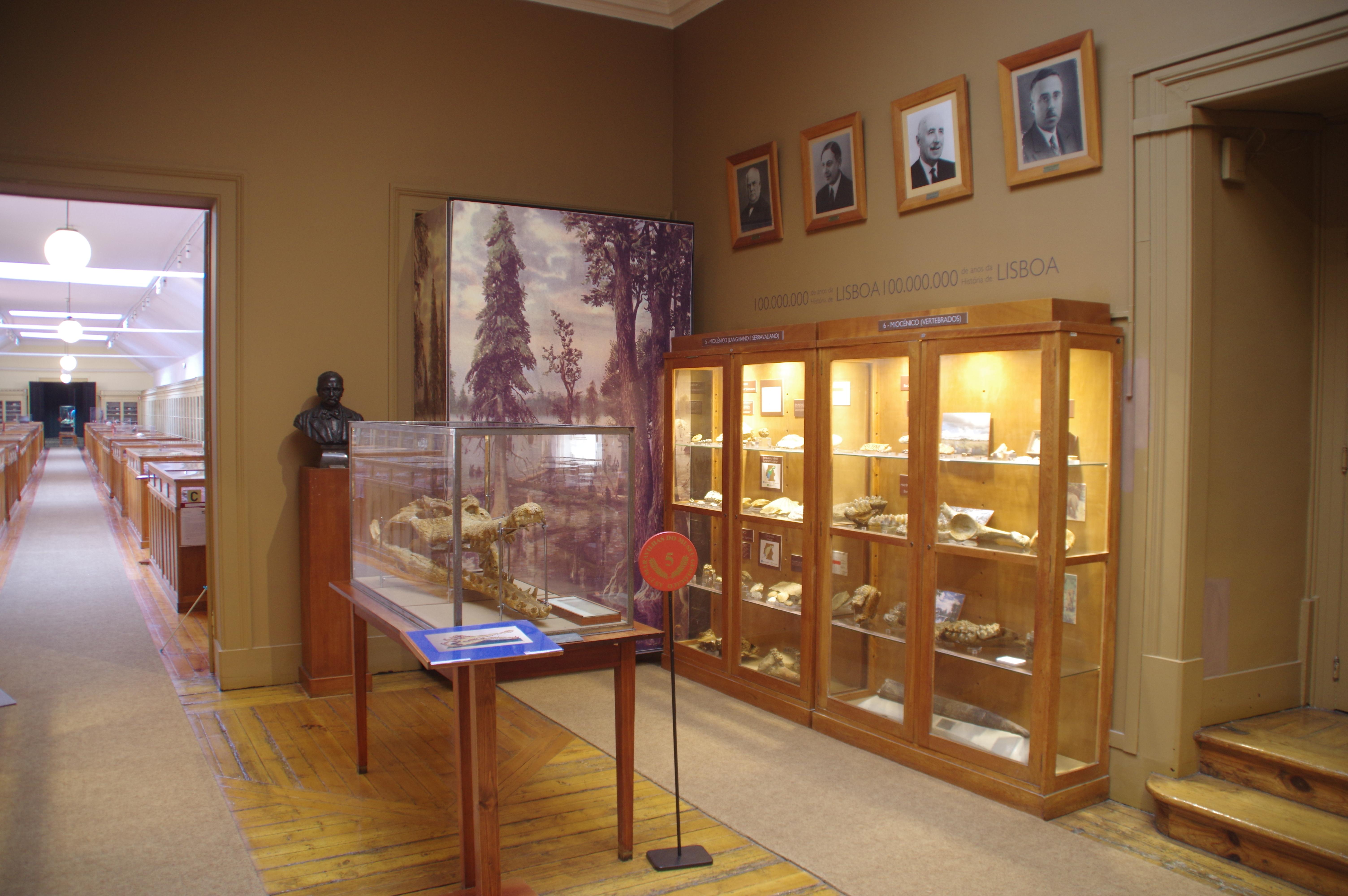Museu Geológico no Programa Visita Guiada da RTP2