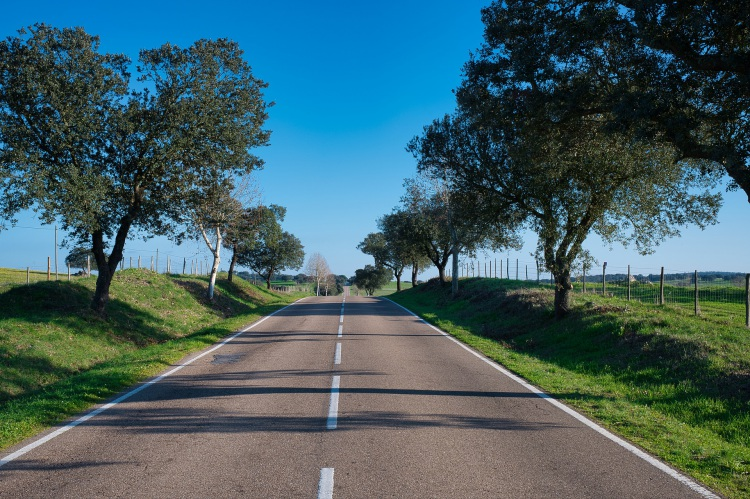Aprovado projeto ambiental para Municípios do Baixo Alentejo