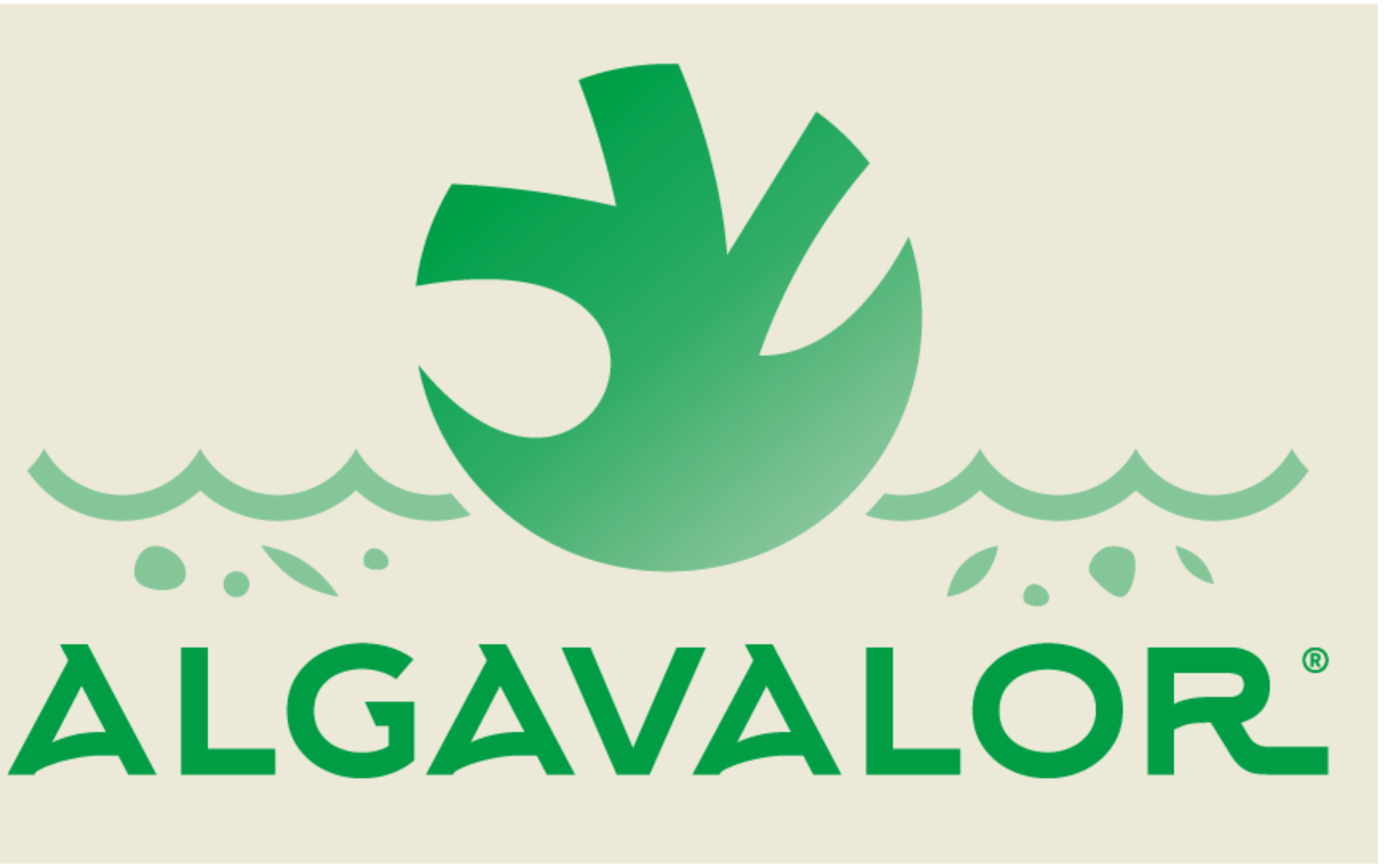 ALGAVALOR