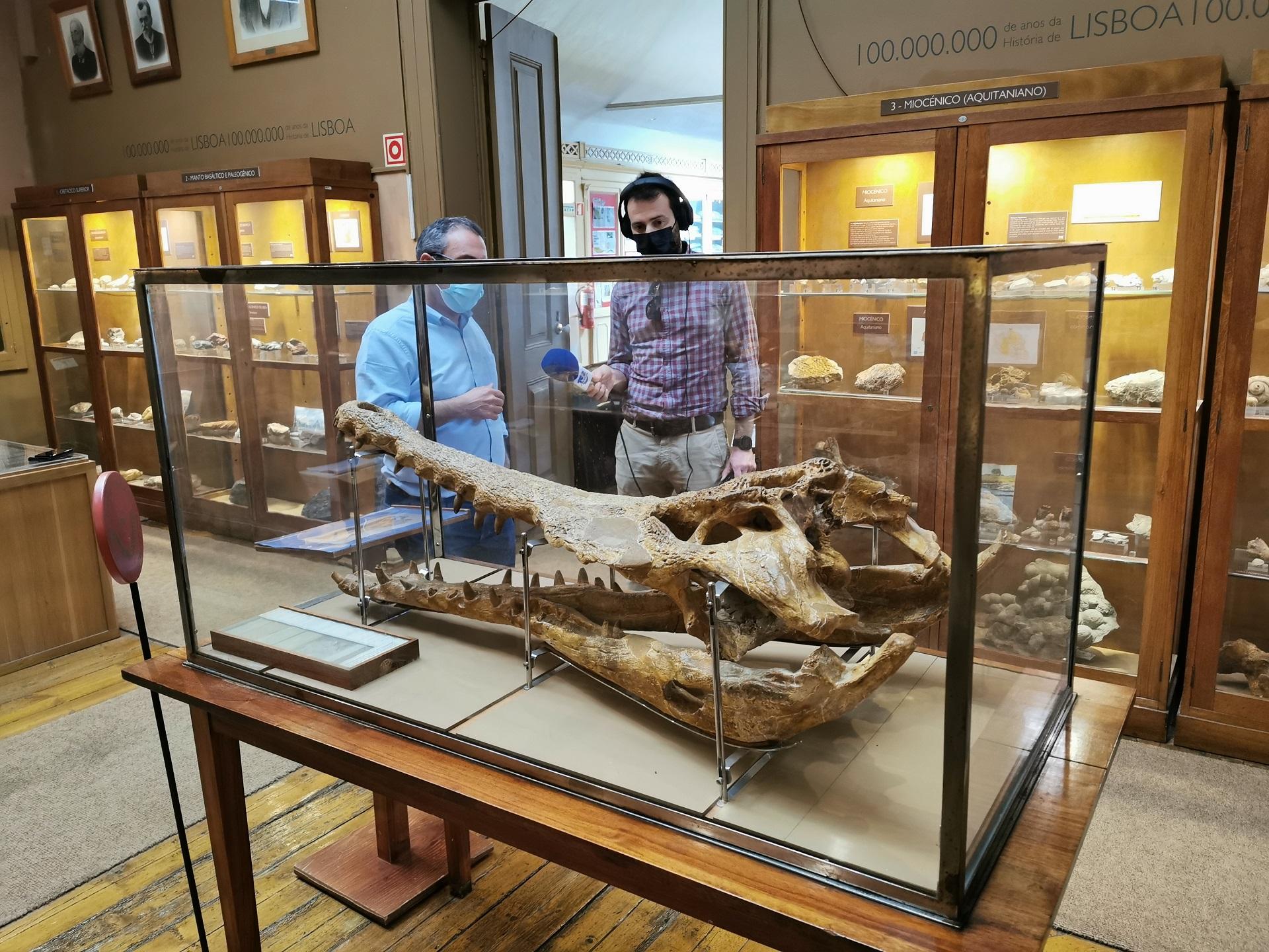 Museu Geológico - Entrevista TSF no âmbito no âmbito da divulgação do património natural e cultural