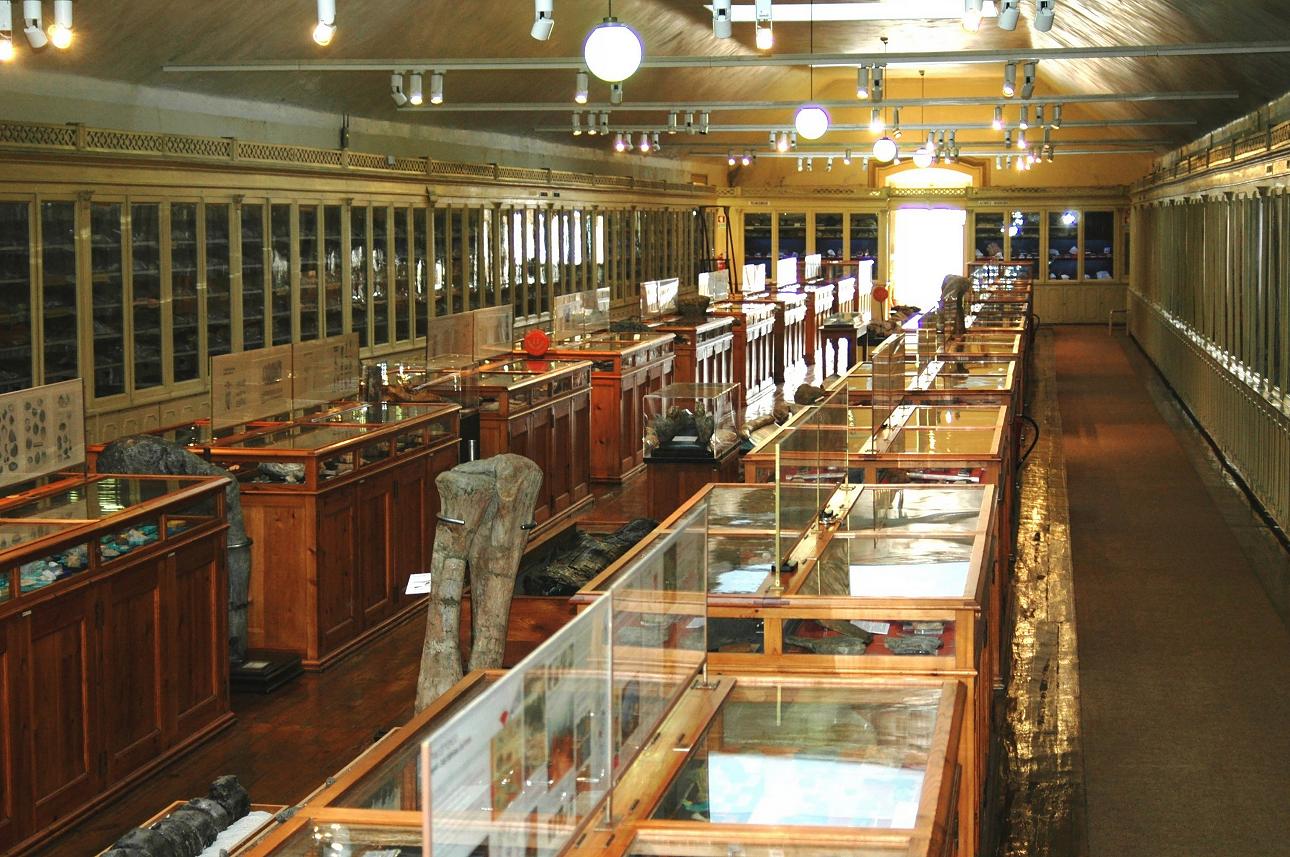 Imagem do Museu Geológico