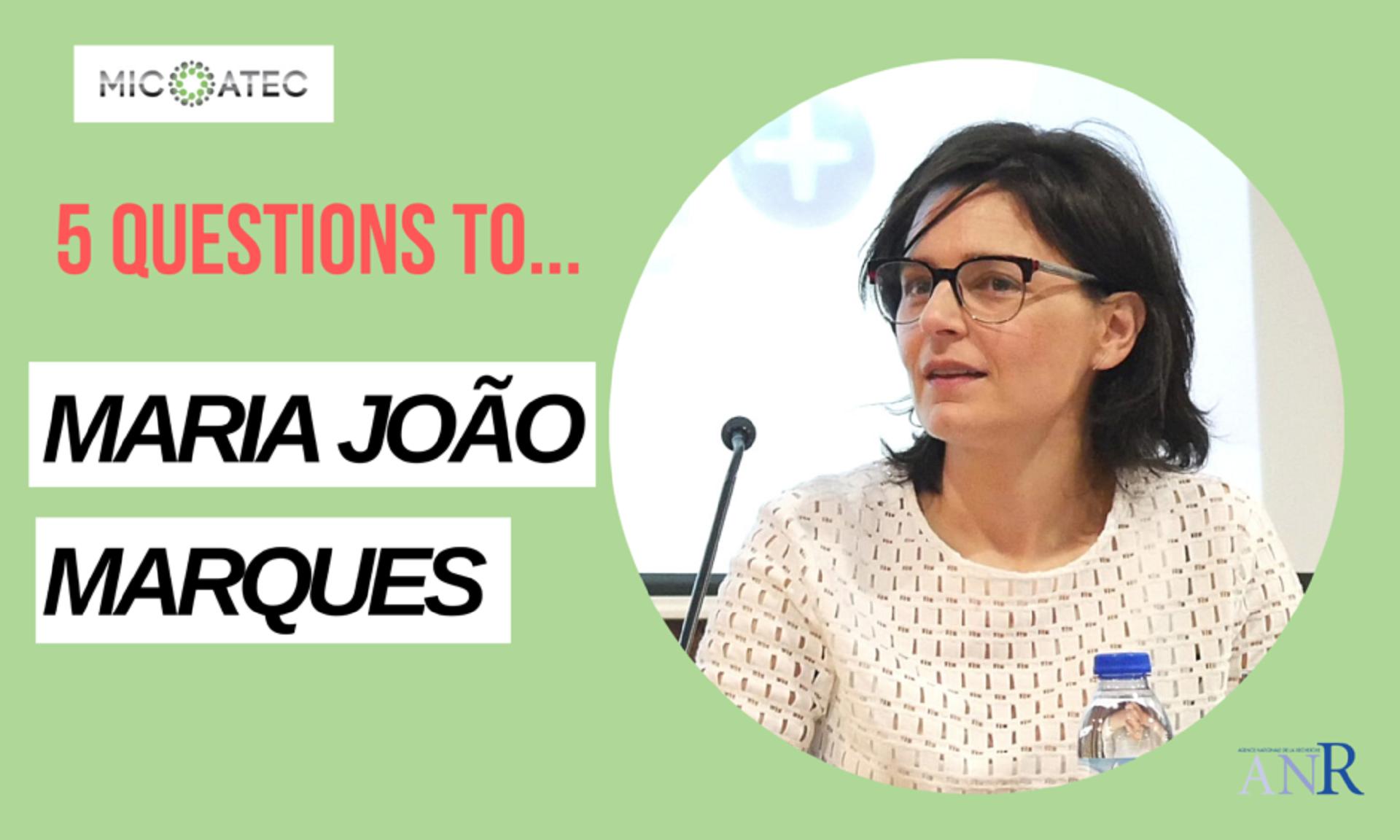 Banner-Entrevista de Maria João Marques