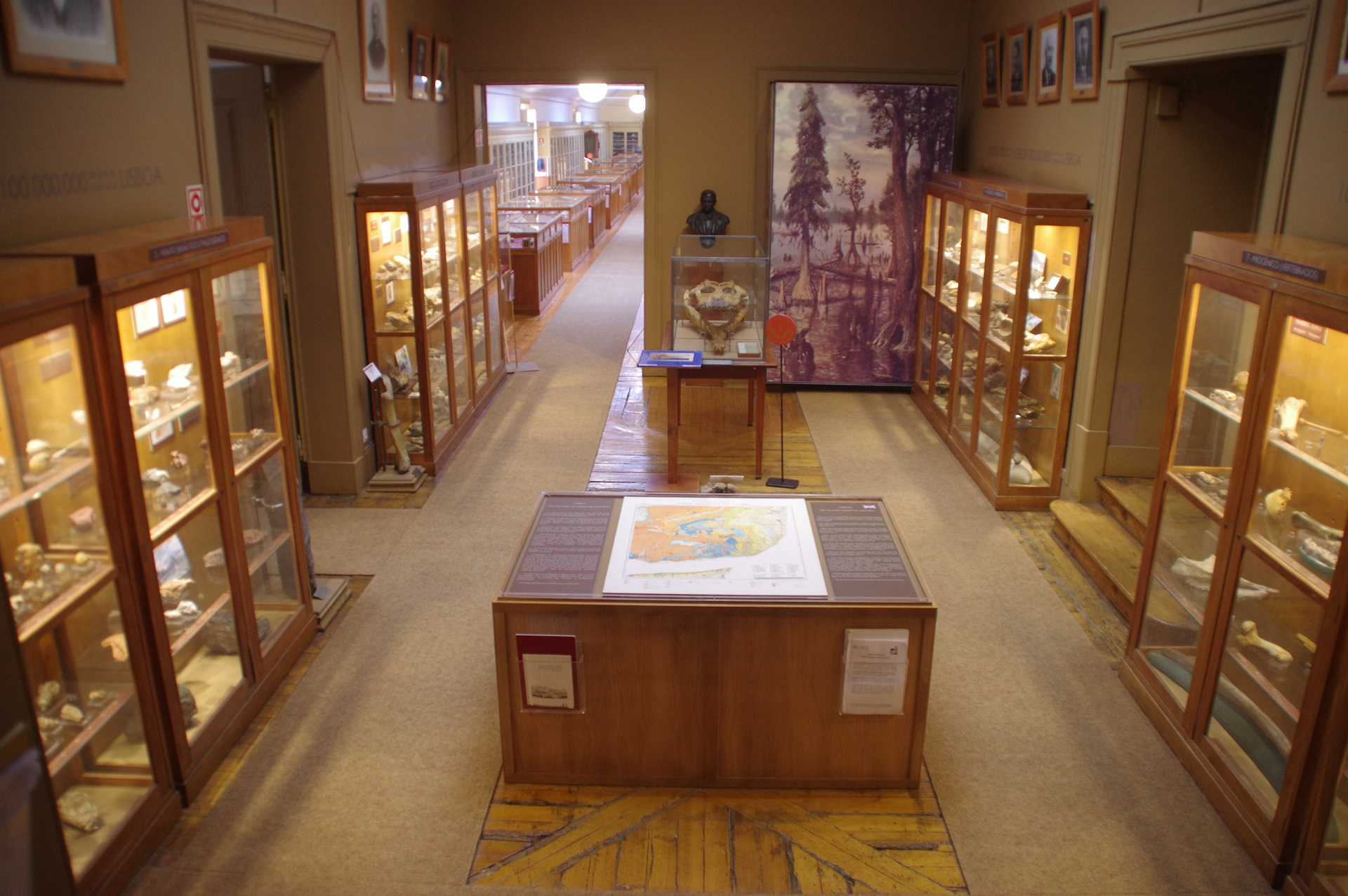Geopark Naturtejo faz réplicas de fósseis com a ajuda do Museu Geológico de Lisboa