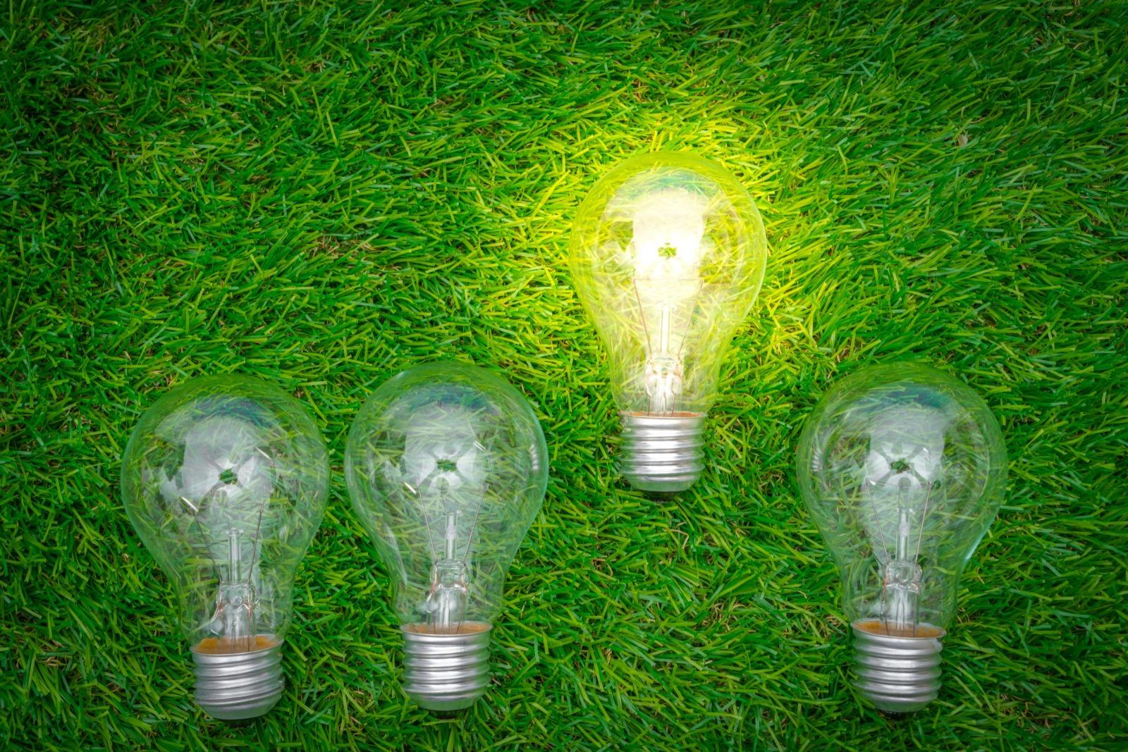 green-disruption-summit