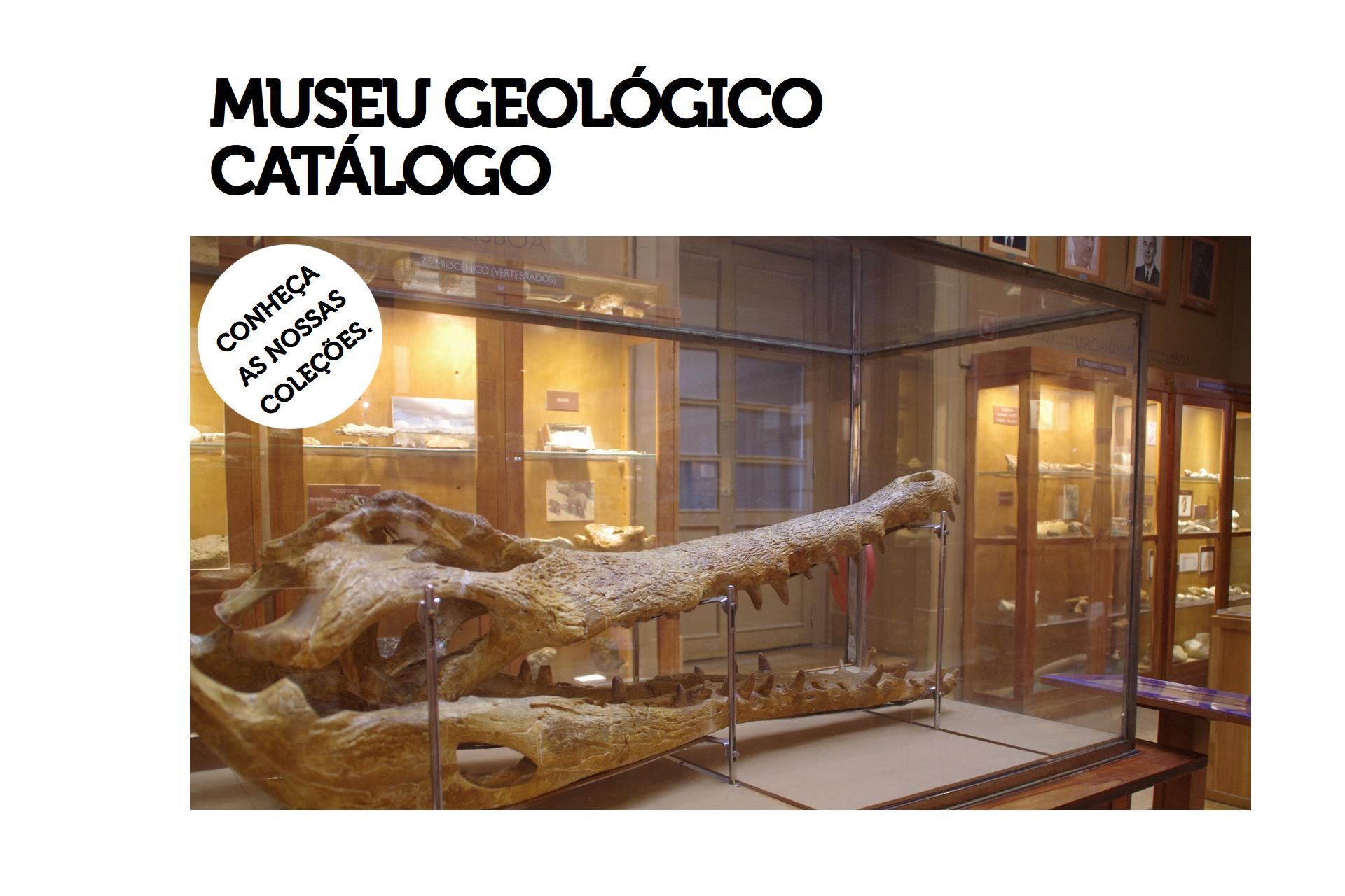 catalogo-do-museu-geologico